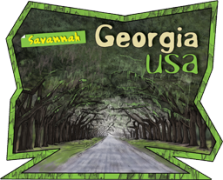 georgia-sticker